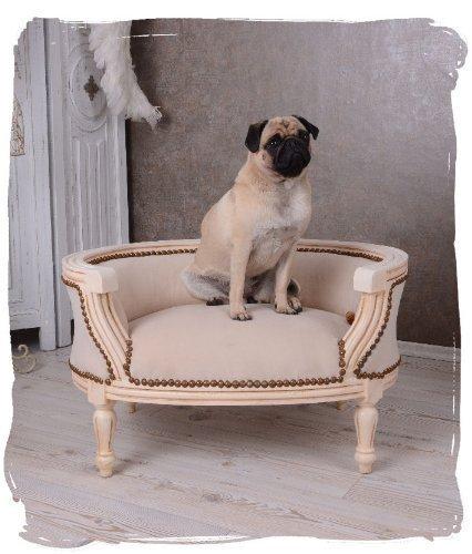 Majestätisches Hundesofa